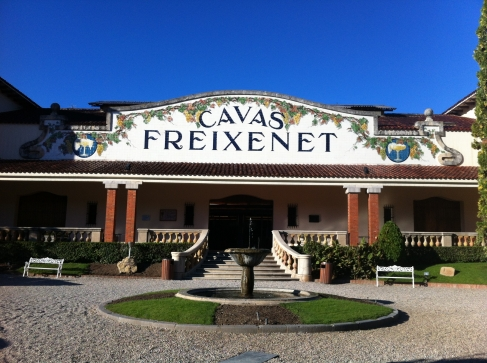 Cava tasting at Freixenet
